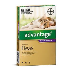 Advantage Cat 4kg+
