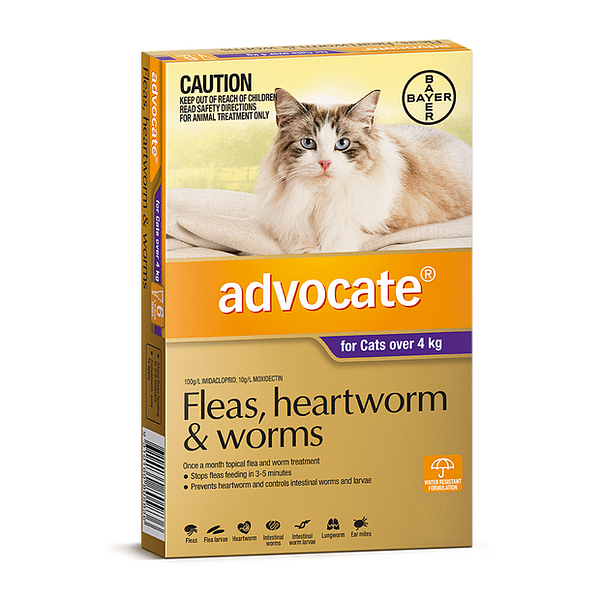 Advocate for Cats over 4kg