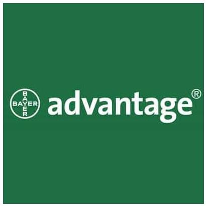 advantage brand