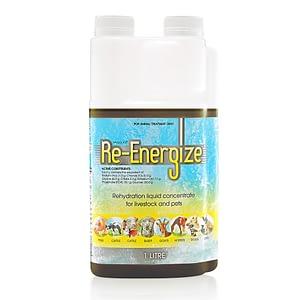 Re-Energize 1lt