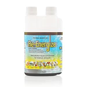 Re-Energize 250mL
